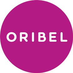 Oribel's VertiPlay Wall Toys for kids